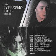 dePresno x iris // Rokken