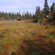 Fra Blefjell til Hardangervidda