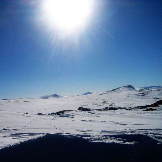Fremste Åmotshytten 1481 moh.