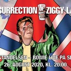 Bowie-hyllest med bokbad og konsert på Sentralen