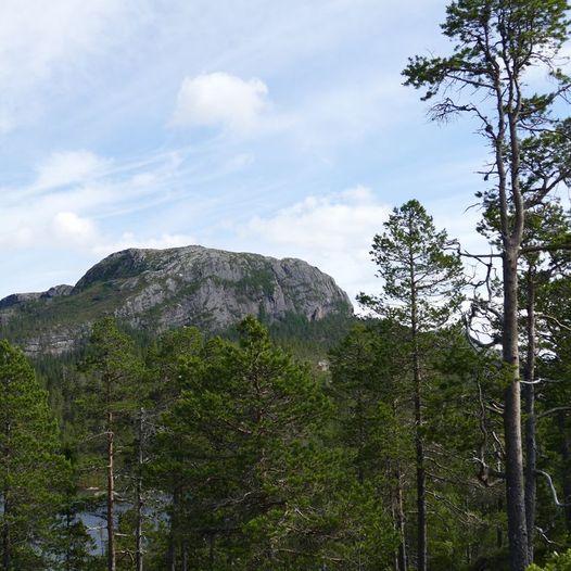 Tur opp på Barstadbøla (448 m.)