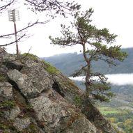 Topptur til Ursdalnatten