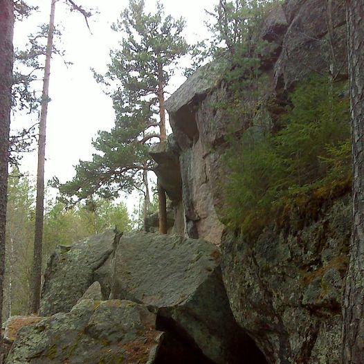 Harestua St. til Korpeberget og tilbake.