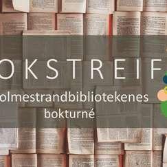 Bokstreif ved Anne-Lene Kiste Johansen // Holmestrand bibliotek
