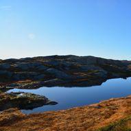 Topptur til Våbrekkefjell, Vikebygd, 553 m.o.h.