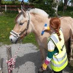 Ferieaktivitet med hestekos på Borgund Dyreklubb onsdag 13.10.21 kl. 10.00 -14.30