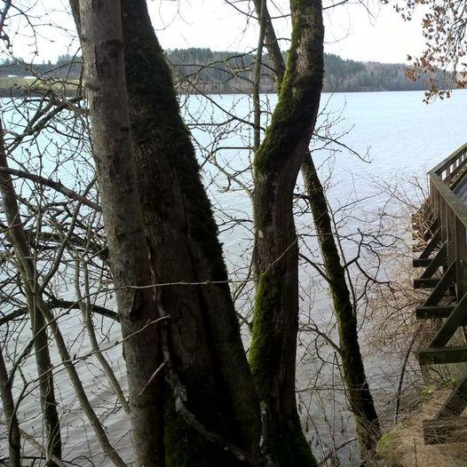 Tur langs Årungen og Syverudbekken.