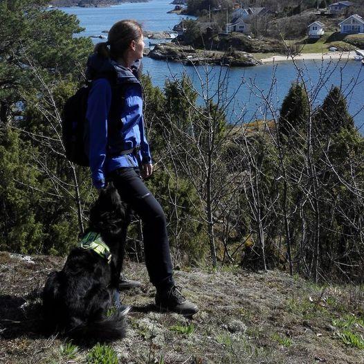 Rundtur på Sandøya