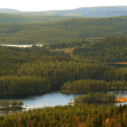 Maridalen High 5: Fem topper på en tur i Nordmarka