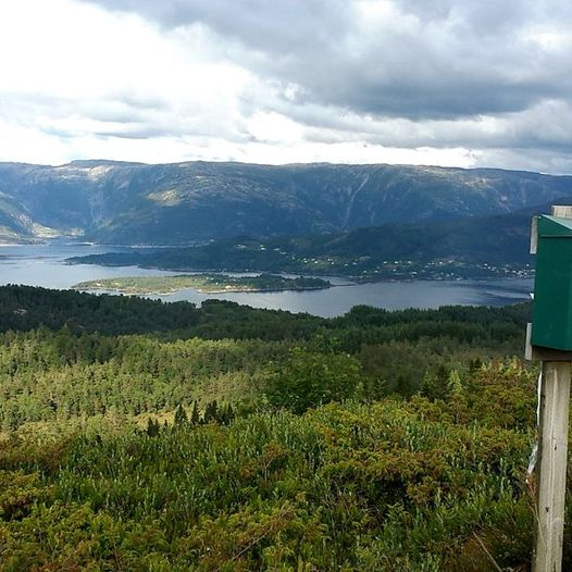 Vefjell - Smørdal - Lialoftet - Selivarden