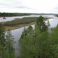 Øvre Pasvik Nasjonalpark
