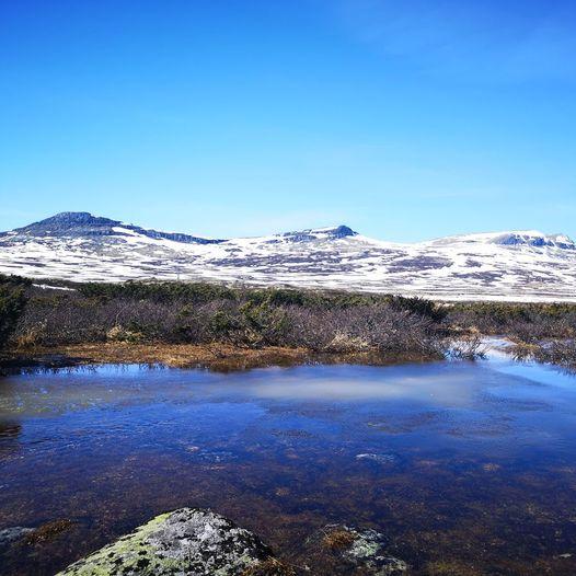 Ramshøgda 10 km tur/retur