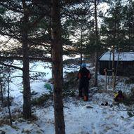 Skogoddvatne, Strøm - KP