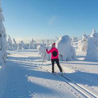 Skitur fra Holmavatn til Bleskestadmoen