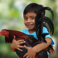 Kampen Økologiske Barnebondegård