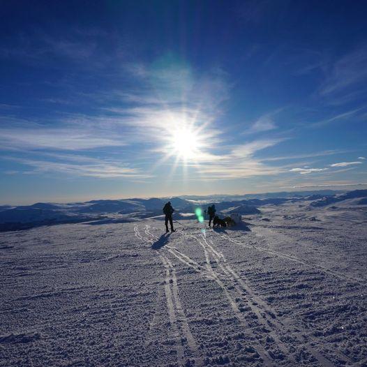 Syndre Knutshøa 1690 moh fra Kongsvoll Fjeldstue