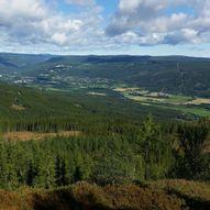 Tranhaug - Skjellingshovde