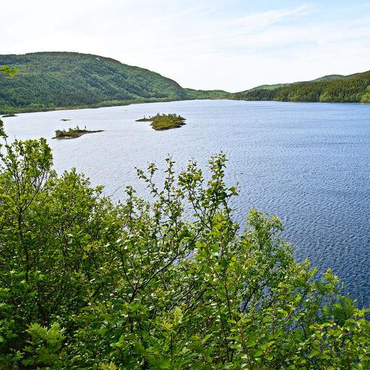 Vågøyvatnet i Bodø