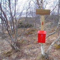 BarmfjordTrimmen - Barmneset.
