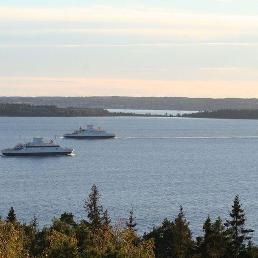 Albyskogen på Jeløy