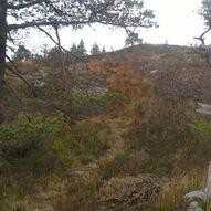 Flott rundtur frå Stølsvatnet med spektakulær utsikt øve Ikjefjorden
