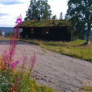 Reinsjø-ruta sykkeltur
