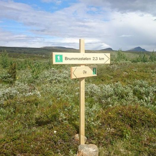 Stølssti med ekstra runde mellom Øysterlie og Brummastøl