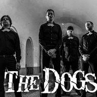 The Dogs // Kongsberg