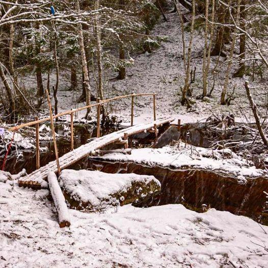 Skogstur til Lundbergåsen og Dragsjøhytta