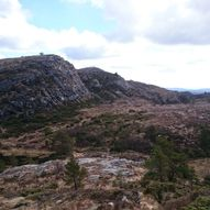 Buafjell og Trolladalen rundtur på Steinsfjellet