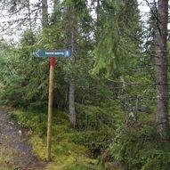 Volhaugen. Rundtur Husby- Gammel seterveg- Syrstamn- Skihytta- Barkstien- Husby