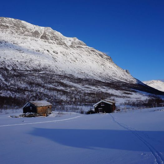 Måssåhaugen 928 moh. fra Vassendsetra.