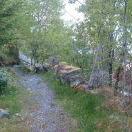Vingsand - Håmannsvika - Estenvikhallin i Osen