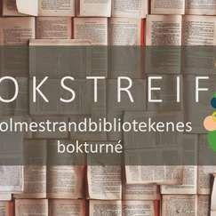 Bokstreif  ved Anne-Lene Kiste Johansen // Sande bibliotek
