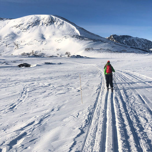 Topptur på ski til Heimdalshøe fra Gjendesheim