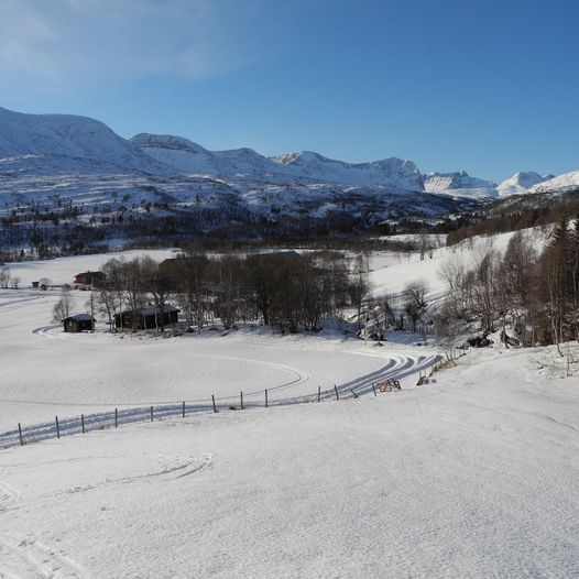 Storbekkhøa 1504 moh.