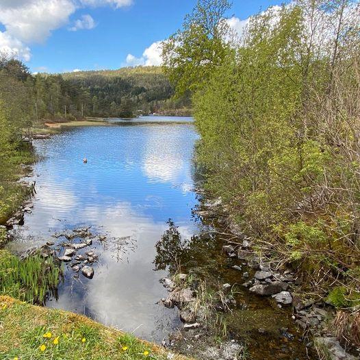 Vinddalsvatnet rundt på Søfteland
