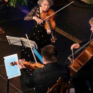 Engegårdkvartetten - Mozart i godt selskap
