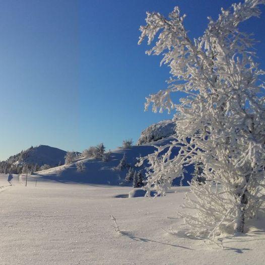 Frøysokstølan, Holtelifjell-runden