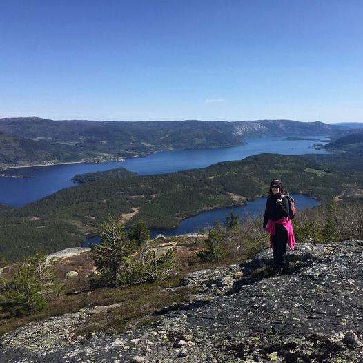 Reinstøyl - Finnroa - Myrbufjellet