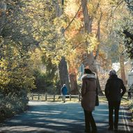 Scottish Tree Festival: Blair Castle's 'Nature Detectives'