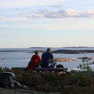 Blåsopp i Onsøy