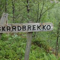 Gamlevegen om Åsskardet, Nygard i Modalen