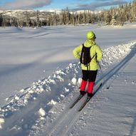 Oversikt over skiløyper i området Kvambekk/Angre/Lognvik.