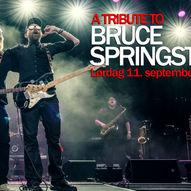Konsert: A Tribute to Bruce Springsteen
