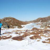 Vikebygd-Ulserhaug, 631 moh