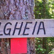 Til branntårnet Elghøgda i Elgheia