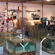 Kvitsøy hummermuseum