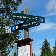 Byfella - Koiedalen - Mistberget - Gml Ridevei - Byfella