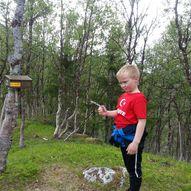 Vikesokken, Normannvik Kåfjord